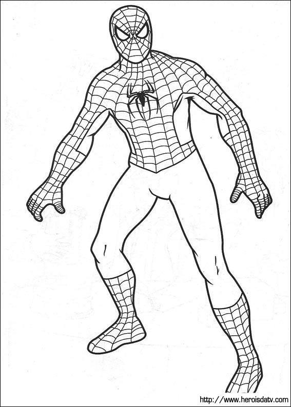 Homem Aranha 42 Desenhos Para Imprimir Colorir E Pintar
