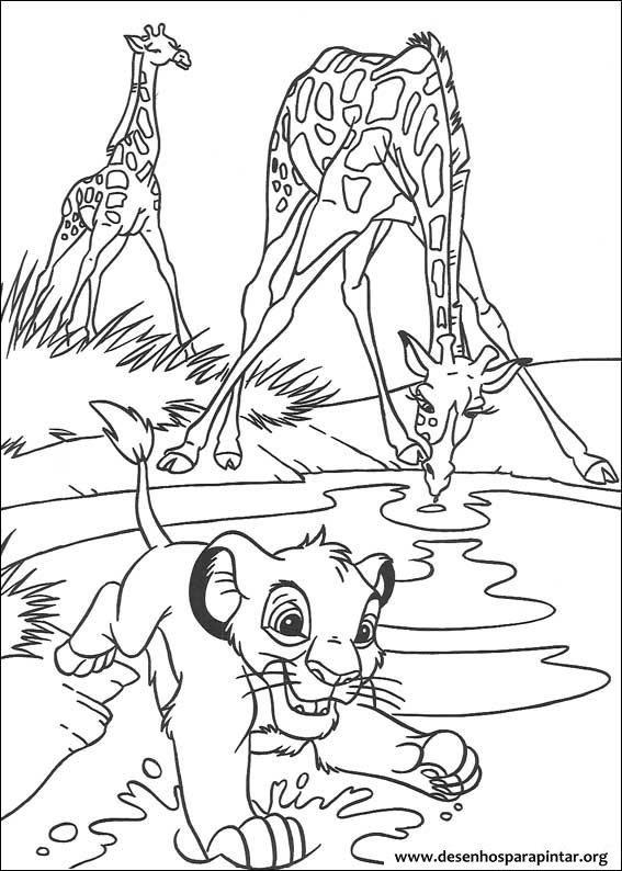 O Rei Leao Desenhos Para Imprimir Colorir E Pintar Do Simba Pumba