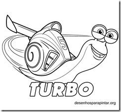 Turbo_caracol_desenhos_colorir_pintar_imprimir-08