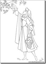 princesa_aurora_bela_adormecida_desenhos_colorir_pintar_imprimir-13