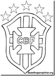 Escudo E Camisa Da Selecao Brasileira Cbf Copa 2014 Desenhos