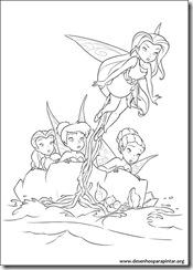 tinker_bell_fadas_piratas_desenhos_imprimir_colorir_pintar-14