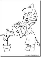 zou_zebra_disney_desenhos_pintar_imprimir0005