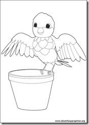 zou_zebra_disney_desenhos_pintar_imprimir0018