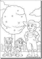 patrulha_canina_nick_desenhos_pintar_imprimir11