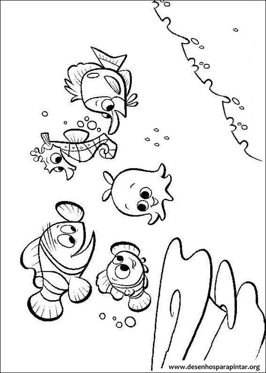 Procurando Nemo Desenhos Para Imprimir Colorir E Pintar