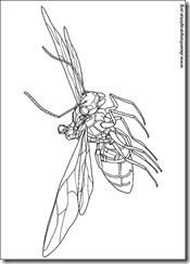 homem-formiga-desenhos_imprimir_colorir_pintar_marvel_herois (10)