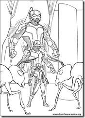 homem-formiga-desenhos_imprimir_colorir_pintar_marvel_herois (6)