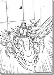 homem-formiga-desenhos_imprimir_colorir_pintar_marvel_herois (9)