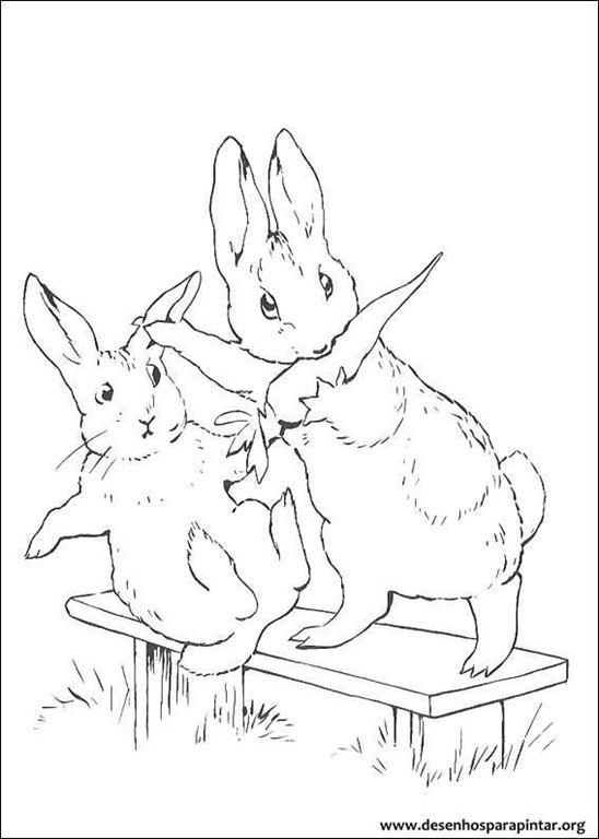 Peter Rabbit O Coelho Pedro Desenhos Para Colorir Imprimir