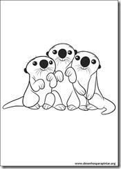 procurando_dory_nemo_desenhos_para_colorir_imprimir_pintar (15)