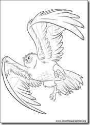 moana_disney_desenhos_para_imprimir_pintar_colorir (5)